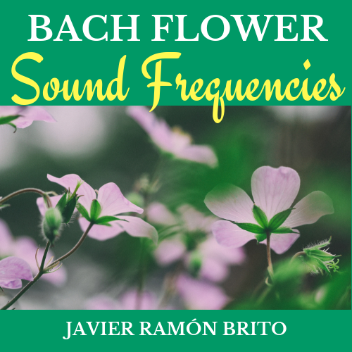 download the bach flower sound frequencies