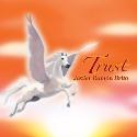 healing music, new age music, meditation music, JAVIER RAMON BRITO: MUSIC ALBUM TRUST