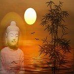 royalty-free-music, healing music, meditation, video
